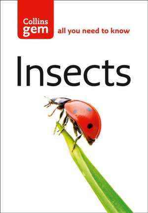 Insects de Michael Chinery