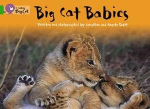 Big Cat Babies de Jonathan Scott