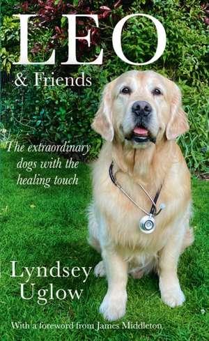 Leo and Friends de Lyndsey Uglow
