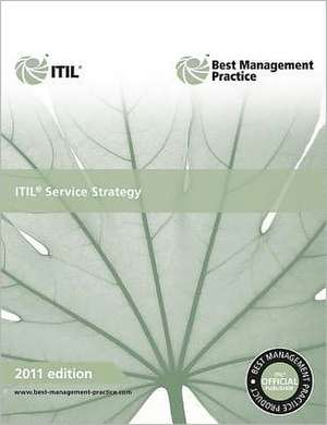Itil Service Strategy:  Guidance for Practitioners de The Cabinet Office