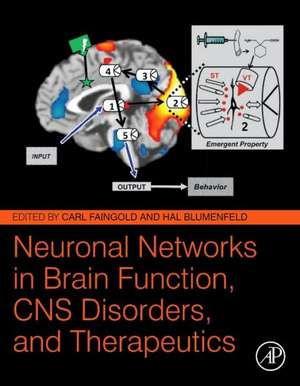 Neuronal Networks in Brain Function, CNS Disorders, and Therapeutics de Carl Faingold