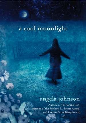 A Cool Moonlight de Angela Johnson