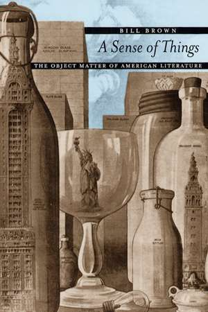 A Sense of Things – The Object Matter of American Literature de Bill Brown