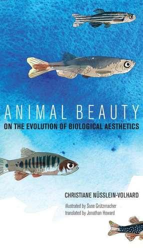 Animal Beauty – On the Evolution of Biological Aesthetics de Christiane Nüsslein–volhar