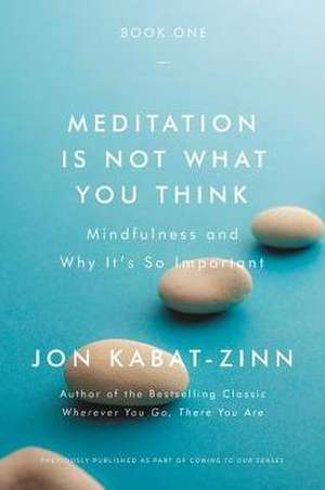 Meditation Is Not What You Think: Mindfulness and Why It Is So Important de Jon Kabat-Zinn