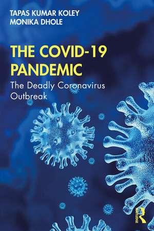 The COVID-19 Pandemic imagine