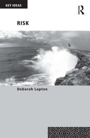 Risk de Deborah Lupton