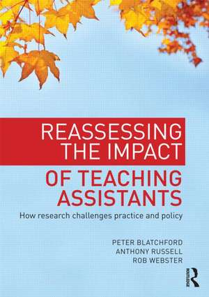 Reassessing the Impact of Teaching Assistants imagine