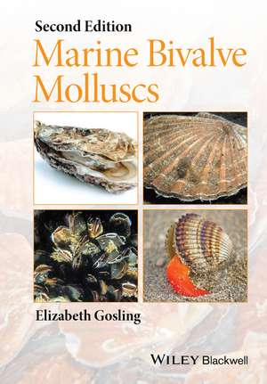 Marine Bivalve Molluscs imagine