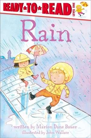 Rain de Marion Dane Bauer