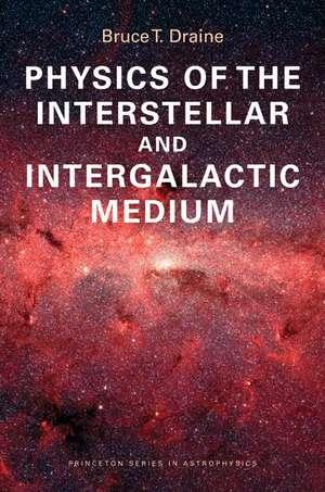 Physics of the Interstellar and Intergalactic Medium imagine