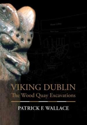 Viking Dublin imagine