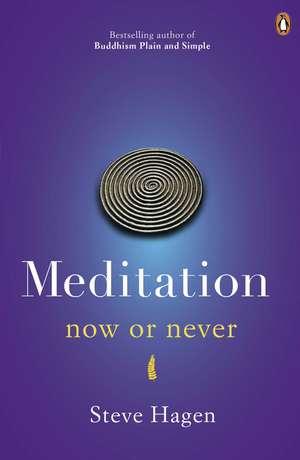 Meditation Now or Never de Steve Hagen