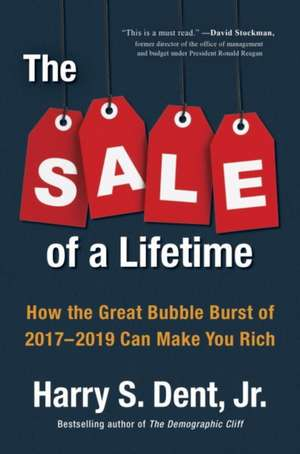 The Sale of a Lifetime: How the Great Bubble Burst of 2017-2019 Can Make You Rich de Harry Dent