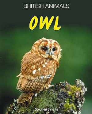 British Animals: Owl