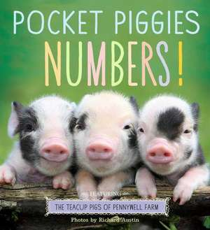 Pocket Piggies Numbers!
