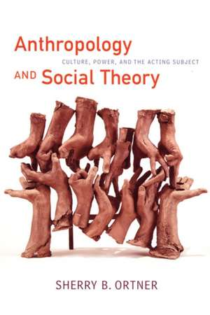 Anthropology and Social Theory imagine