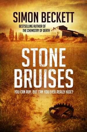 Stone Bruises de Simon Beckett