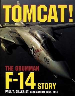Tomcat Grumman F14 Story imagine