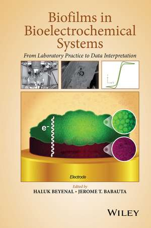 Biofilms in Bioelectrochemical Systems