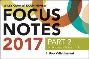 Wiley CIAexcel Exam Review Focus Notes 2017, Part 2