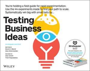 Testing Business Ideas imagine