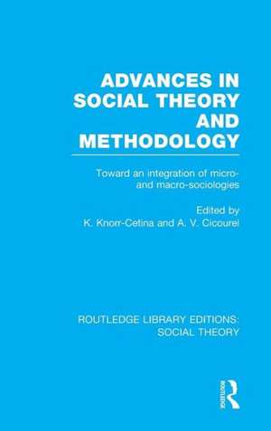 Advances in Social Theory and Methodology