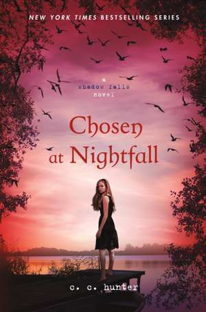 Chosen at Nightfall:  Pieces of a Man de C. C. Hunter