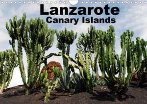 Lanzarote - Canary Islands (Wall Calendar 2020 DIN A4 Landscape) de Peter Schneider