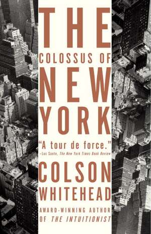 The Colossus of New York:  Stories of Men in Trouble de Colson Whitehead