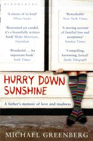 Hurry Down Sunshine de Michael Greenberg