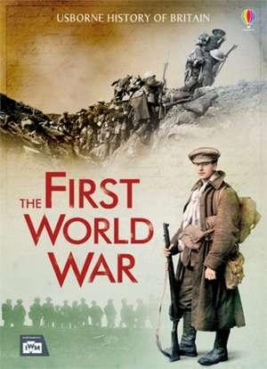 The First World War de Henry Brook
