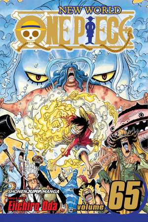 One Piece, Vol. 65