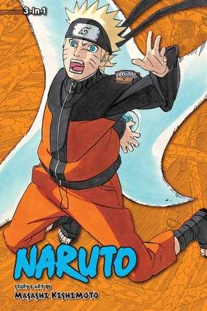 Naruto (3-in-1 Edition), Vol. 19