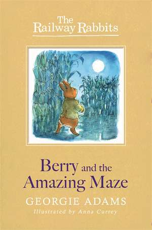 Berry and the Amazing Maze de Georgie Adams