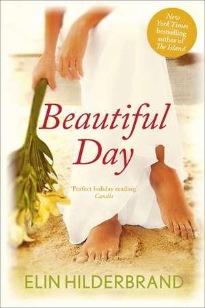 Beautiful Day de Elin Hilderbrand