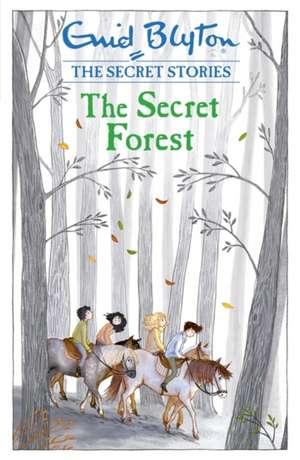 Secret Stories: The Secret Forest de Enid Blyton