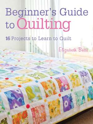 Beginner's Guide to Quilting imagine