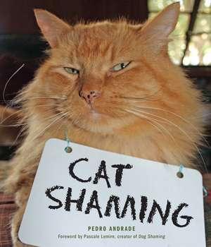 Cat Shaming de Pedro Andrade