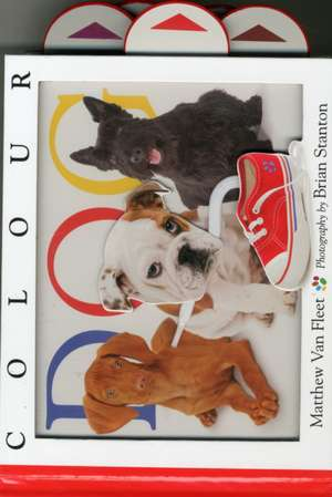 Colour Dog