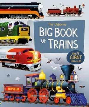 Big Book of Trains de Megan Cullis