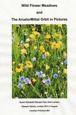 Wild Flower Meadows and the Arcelormittal Orbit in Pictures de Llewelyn Pritchard Ma