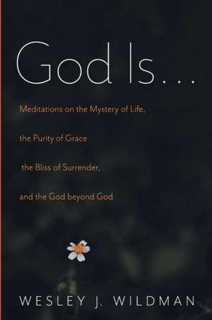 God Is . . . de Wesley J. Wildman