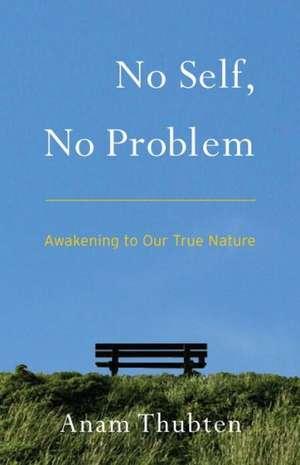 No Self, No Problem:  Awakening to Our True Nature de Anam Thubten