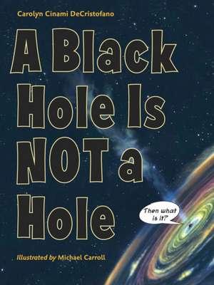 A Black Hole Is Not a Hole