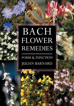 Bach Flower Remedies Form and Function:  Re-Visioning Science & Spirituality Through Aristotle, Thomas Aquinas, and Rudolf Steiner de Julian Barnard
