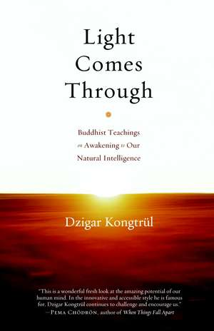 Light Comes Through:  Buddhist Teachings on Awakening to Our Natural Intelligence de Dzigar Kongtrul