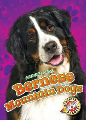 Bernese Mountain Dogs de Rebecca Sabelko