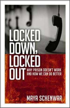 Locked Down, Locked Out: Why Prison Doesn't Work and How We Can Do Better de Maya Schenwar