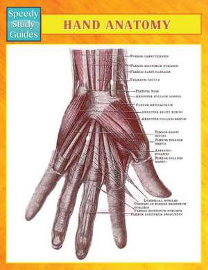 Hand Anatomy (Speedy Study Guides)